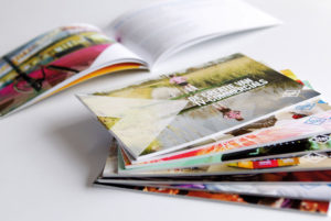 Brochures softcover <BR>&#8220;Ster&#8221;